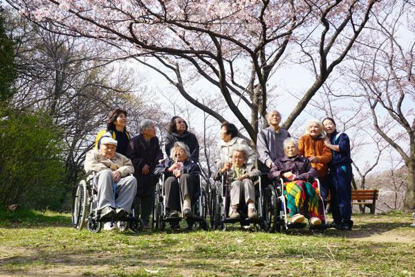 久良岐公園でお花見