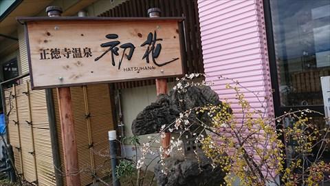DSC_9887_S.JPG