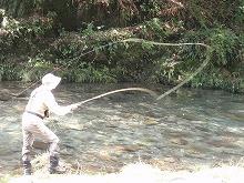 渓流魚釣り