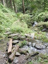 自然がつくりだした川