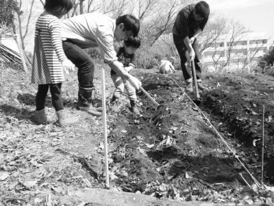 土を寄せる。