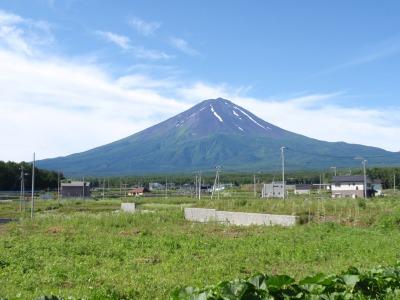 今朝の富士山はあおあおとしていました。