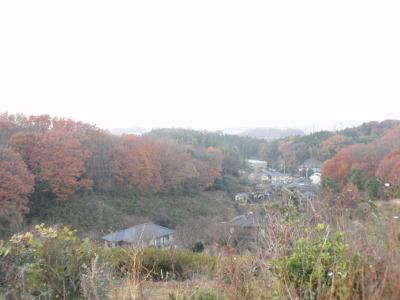 山の谷間へひが沈みかけると足元にひろがる紅葉も影をおろし…さぁ、そろそろ帰りましょう。