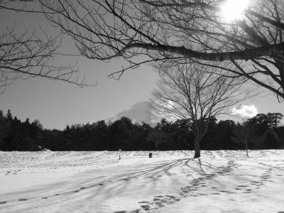 富士の足元に広がるは雪野原