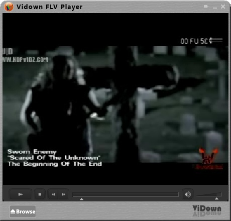 ViDown FLV Downloader