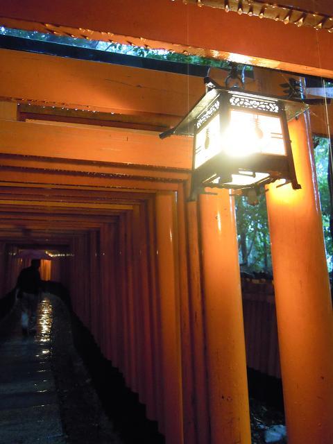 伏見稲荷大社とランプ