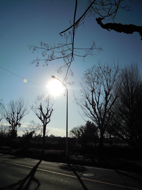 太陽とシルエット