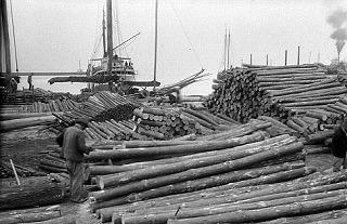 長浜の貯木場