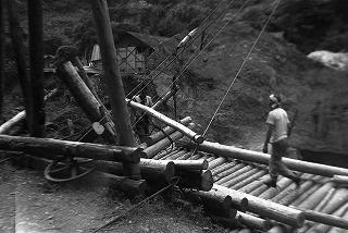 索道による木材の運搬
