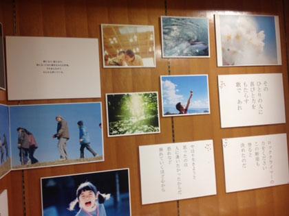 20130128tenji_001.jpg