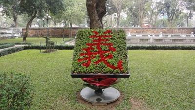 ベトナム−19
