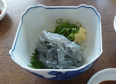 沼津港で昼食−1