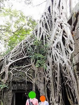 カンボジア−54