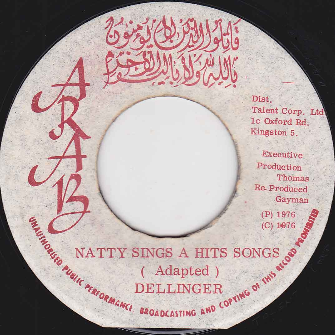 natty-sings-a-hits-songs.jpg