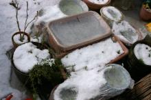 積雪菜園1