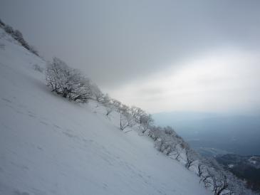 伊吹登山5