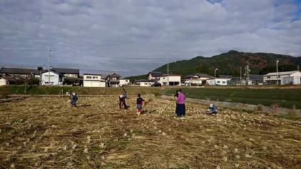 改:収穫祭