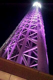 20121218_002410.jpg