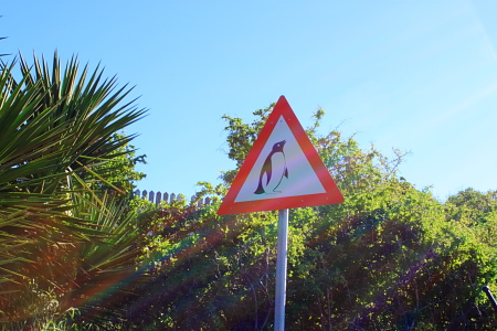 pengin sign.JPG