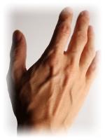 男性の手の甲