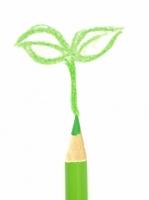 黄緑色の色鉛筆