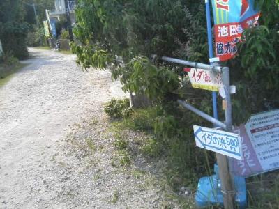 イダの浜へ行く道