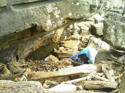 西表島沿岸部半洞窟