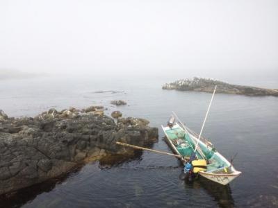 ウニ漁磯舟