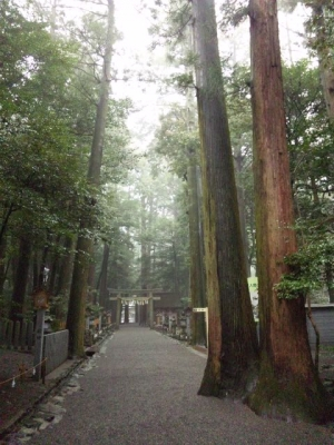 椿大神社参道