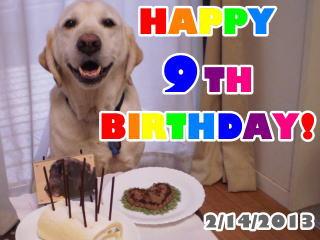 [写真]Happy 9th Birthday Al!