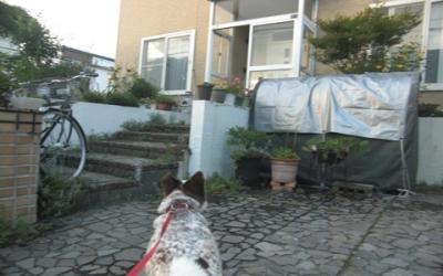 クーちゃん家で.jpg