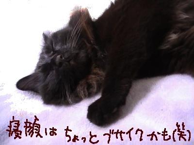 ぶちゃいく寝顔