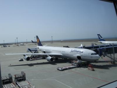 ルフトハンザ航空で