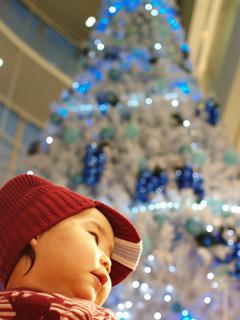 クリスマスツリーの前で。