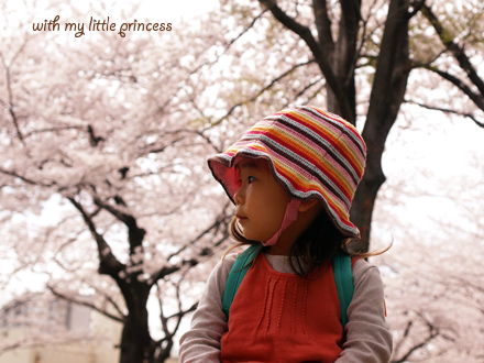 満開の桜と、ちび姫。