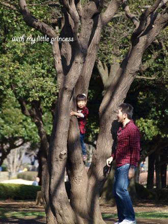 お父さんと木登り。