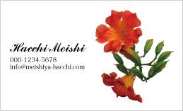 花のデザイン名刺 PPL-019A(ノウゼンカズラ)
