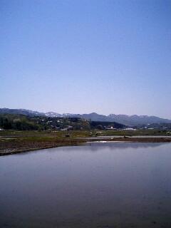 20060504_112497.jpg