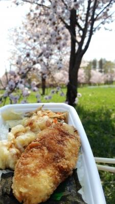 桜とのり弁