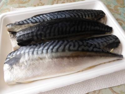 鯖の魚醤漬