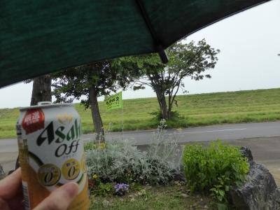 傘さしながらなんて初めてだ(゚д゚)!