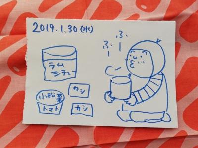 2019.1.30 memo