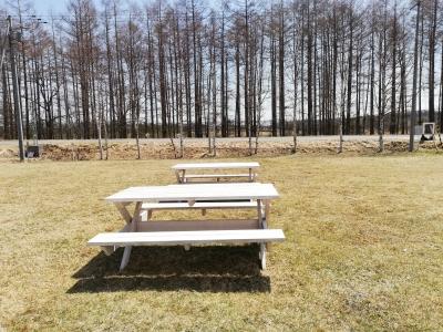 このベンチが事件を引き起こす
