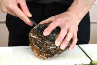 山口県大島産 天然岩牡蠣