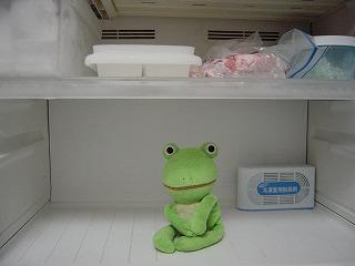 冷凍庫、すっからか〜ん de スタンバイ オケオケ(・ω・)ノ