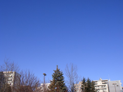 雲がない快晴