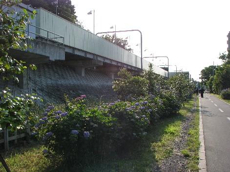 八坂駅と多摩湖サイクリング道路