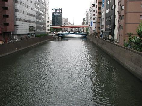 橋から下流を見る