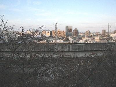 2009/03/29飛鳥山公園