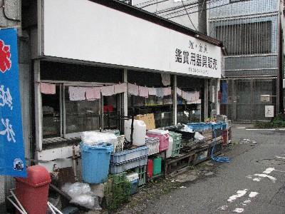 三軒茶屋ツリボリ20090530-2